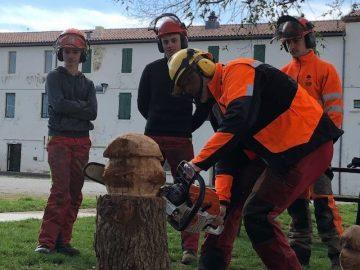 tronconneuse-formation-forestier-bac-professionnel-etudes-pro-environnement-foret-ouvrier-forestier-filiere-bois-occitanie