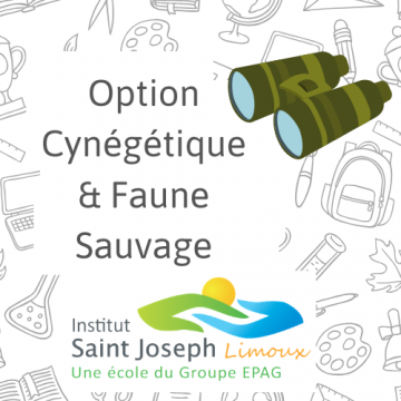 lycee-saint-joseph limoux-options-au-bac